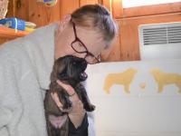 Puppy_first_gruel