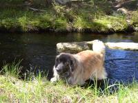 Bora_creek